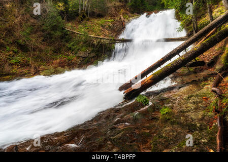 Waterfall in Rhodopes mountain, Bulgaria. Full spring river in Canyon of waterfalls - Stock Image
