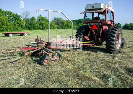 International Harvester row crop tractor and H&S Rotary Rake model SR420 in hay field. - Stock Image