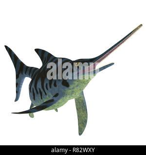Eurhinosaurus Ichthyosaur Reptile on White - Eurhinosaurus was a carnivorous Ichthyosaur reptile that lived in Europe during the Jurassic Period. - Stock Image