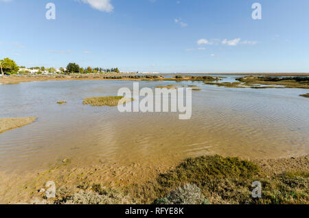 Ria Formosa natural park, near Santa Luzia, Barril beach,Algarve, Portugal, Europe. - Stock Image