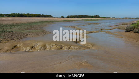 Panorama across Iken marshes and river Alde, Suffolk, England - Stock Image