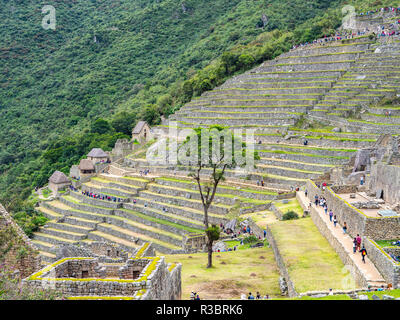 Typical constructions in terraces in the Machu Picchu citadel - Stock Image