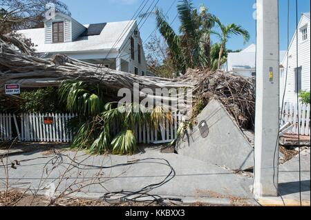 Debris and damaged homes in the aftermath of Hurricane Irma September 18, 2017 in Key West, Florida.  (photo by - Stock Image