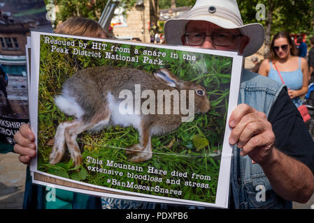 Hebden Bridge, UK. 11th August 2018. Rally to ban grouse shooting held in Hebden BridgeÕs St GeorgeÕs Square. The nearby uplands are let out by Yorkshire Water to grouse shooters who are accused of decimating the wildlife for sport by trap and gun, burning large sections of heather to increase game bird numbers and decimating blanket bog and contributing to flooding in the valley. The protesters urged Yorkshire Water to stop leasing land above the town for grouse shooting. The protest was organised by The League Against Cruel Sports and Ban Bloodsports on YorkshireÕs Moors. Credit: Stephen Bel - Stock Image