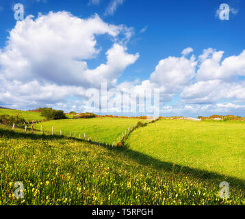 background of landscape with hills and meadow - Stock Image