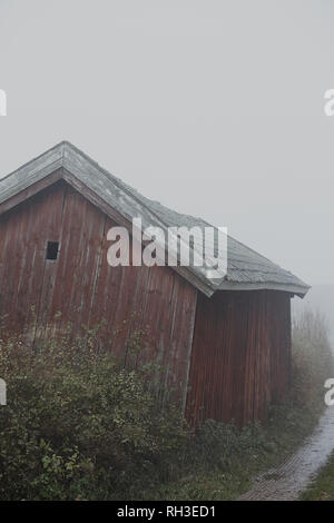 Building and trees in fog - Stock Image
