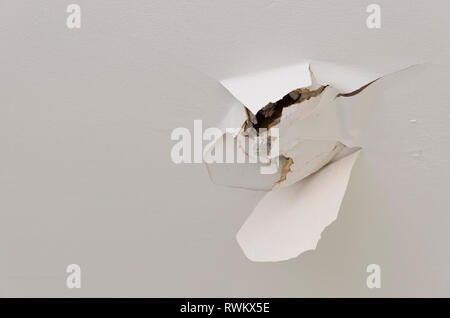 Plasterboard ceiling damaged with hole. - Stock Image