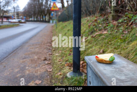 Fresh, newly made, cheese sandwich placed and left behind on electrical enclosure on the side of the road - Stock Image