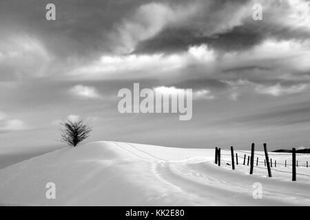 Asiago Plateau, Vicenza, Veneto Italy - Stock Image