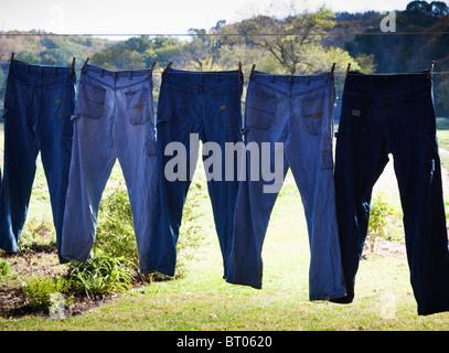 Back lit blue jeans hanging on clothes line - Stock Image
