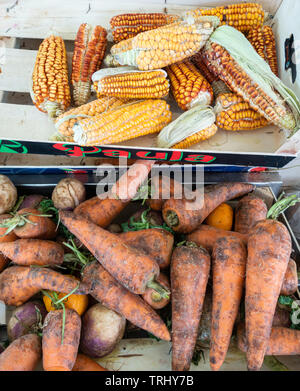 Reduced price loose Carrots and veg on market stall in Spain. - Stock Image