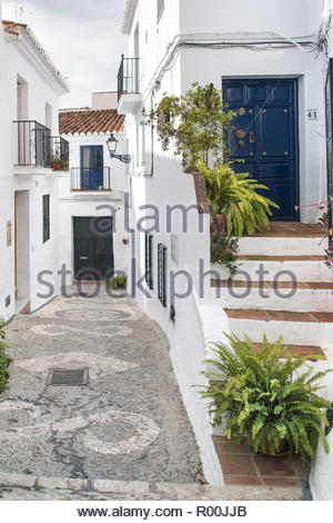 Potted plants on steps to house - Stock Image