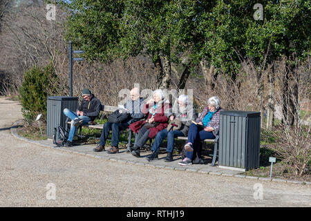 People on a bench in the University of Copenhagen Botanical Garden; Copenhagen, Denmark - Stock Image