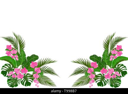 Set, bouquet. Corner drawing. Green tropical leaves of banana, coconut, monstera and ogawa. Pink Orchid. illustration - Stock Image