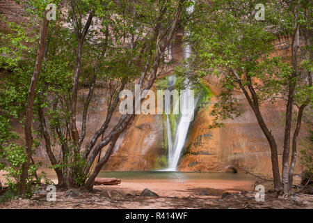 USA, Utah, Grand Staircase-Escalante National Monument. Lower Calf Creek Falls and pool. - Stock Image