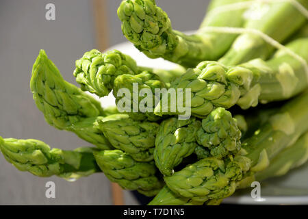 a bundle of washed raw garden asparagus or sparrow grass on plate lit by the sun abstract look, green asparagus officinalis - Stock Image