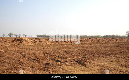 An arable field with a line of manure ready for ploughing in at Limpenhoe, Norfolk, England, United Kingdom, Europe. - Stock Image