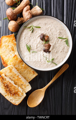 Thick soup puree of fresh wild mushrooms with thyme close up in a bowl served with toast on the table. Vertical top view from above - Stock Image