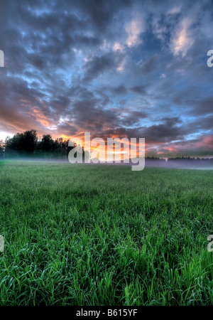 Colorful sunset - Stock Image