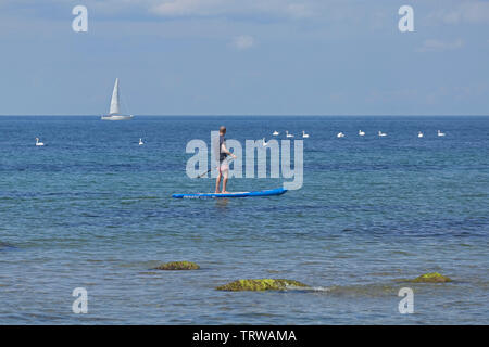 man doing stand-up paddle boarding, coast near Steinbeck, Mecklenburg-West Pomerania, Germany - Stock Image