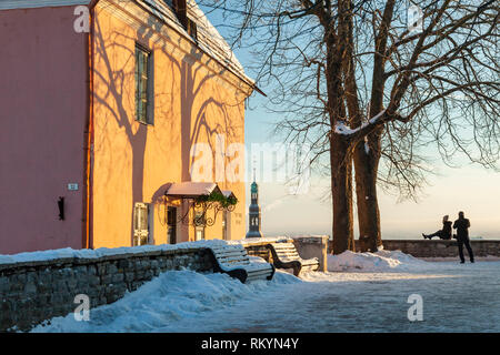 Winter morning on a viewing terrace in Tallinn old town. - Stock Image