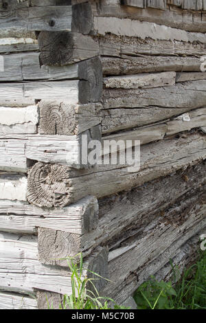 Corner of log building on farm in Ontario Canada showing hand built dovetail corner - Stock Image