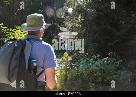 hiker checking trail marker sign in the Black Forest, Germany, Europe - Stock Image