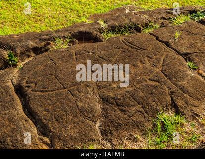 Petroglyphs in Papa Vaka, Rapa Nui National Park, UNESCO World Heritage Site, Easter Island, Chile - Stock Image