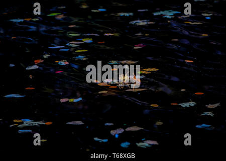 Large background and copyspace abstract composition featuring fall color leaves on water at night - Stock Image