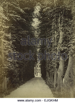 Circa 1870 Albumen print of Trinity College at Cambridge University, England. A dark tree lined pathway leading - Stock Image