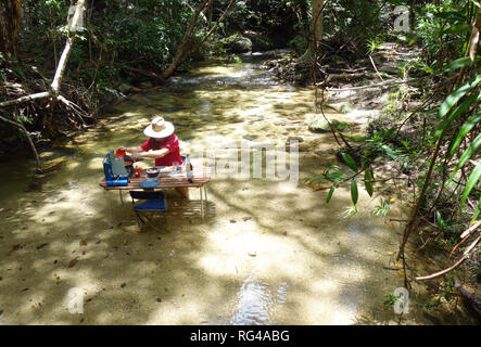 Man BBQing on picnic table set up in rainforest creek, Dinden National Park, near Cairns, Queensland, Australia. No MR or PR - Stock Image