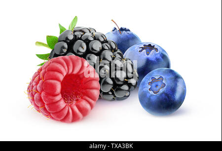Isolated berries. Blackberry, raspberry and blueberries isolated on white background with clipping path - Stock Image