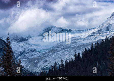 View from Going to the Sun Road, Glacier National Park Montana, USA - Stock Image