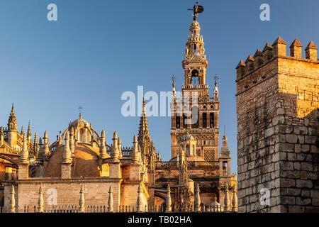 La Giralda Tower and defensive wall of Los Reales Alcazares, Seville, Spain - Stock Image