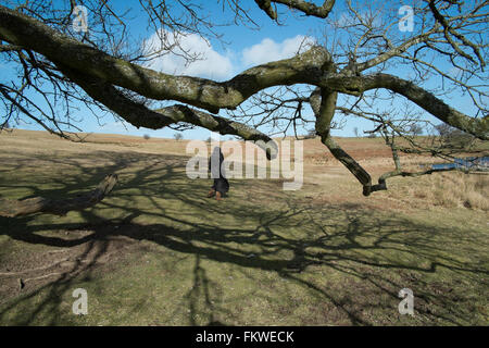 The Begwns mid Wales heath common with  360 degree views,  across Hay Bluff and the Black Mountains. - Stock Image