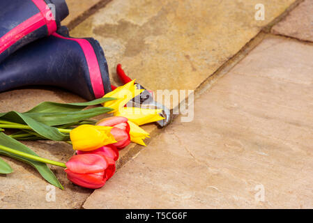Pair of blue wellington boots on a stone patio. Ladies  rain boots. Spring cut flowers, yellow and red tulips, with secateurs. - Stock Image