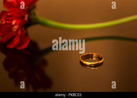 Gold rings with diamonds on a mirrored background. In the background rose, which is reflected on the surface. - Stock Image