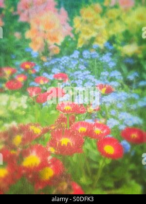 Spring flower garden with red daisies, blue forget-me-nots and yellow, pink and peach snapdragons. Vintage painterly - Stock Image