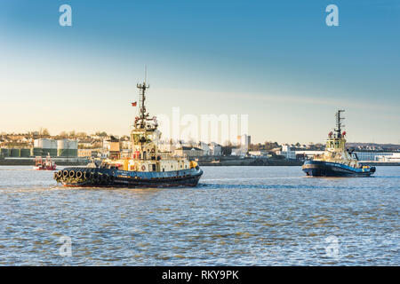 Early morning sunlight over the tugs Svitzer Cecilia and Svitzer Brunel working on the River Thames. - Stock Image