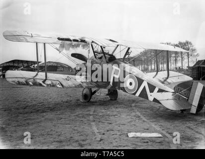 A British Royal Naval Air Service, RNAS, Sopwith Camel F.1 fighter of World War One. Taken at Poperinge in Belgium it has the serial number B7320 and of number 70 squadron. It shows extensive damage due to anti aircraft fire. - Stock Image