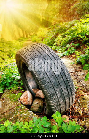 Abandoned car tire standing on a soil pathway in the forest - Stock Image