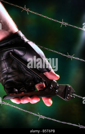 Hand cutting barb wire - Stock Image