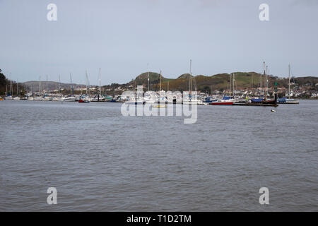 View of Conwy (Conway) Harbour in North Wales with a variety of boats at anchor and Deganwy in the background - Stock Image