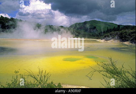 New Zealand north island near rotorua Waiotapu thermal area chamgane pools thermal lake - Stock Image
