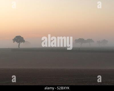 Sunrise on a misty autumn morning in Suffolk. - Stock Image