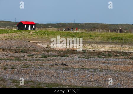 Rye, East Sussex, UK. 11th Apr, 2019. UK Weather: Cloudy intervals with blustery winds on the Rye harbour nature reserve as a few people take a walk along the many scenic routes. Credit: Paul Lawrenson 2019, Photo Credit: Paul Lawrenson/Alamy Live News - Stock Image