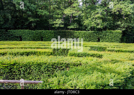 Green Maze Chenonceau Castle Loire Valley France - Stock Image