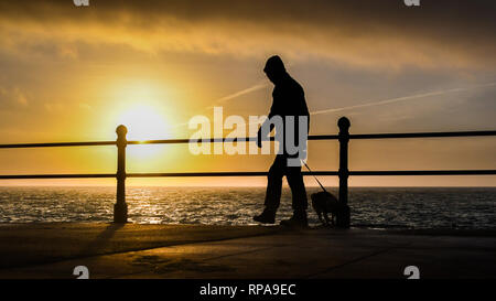 Penzance, Cornwall, UK. 21st Feb 2019. UKL Weather. Warm and sunny start to the day on the seafront at Penzance for this early morning dog walker. Temperature just after sunrise was 12 degrees C and expected to rise to 14 today. Credit: Simon Maycock/Alamy Live News - Stock Image