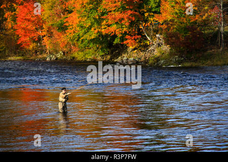 Canada, Nova Scotia, Cape Breton, Angling for salmon on the Margaree river - Stock Image