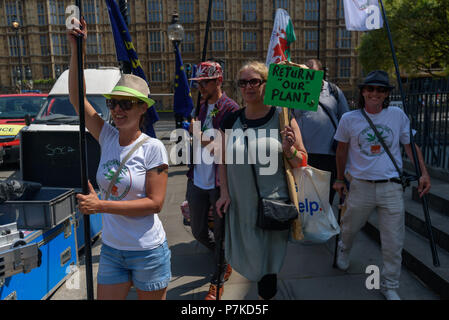 London, UK. 6th July 2018. Members of the group 'We The Undersigned Have a Legal Right to use Cannabis' walk to a protest in Old Palace Yard in support of Newport West Labour MP Paul Flynn's Private Member's Bill to allow the medical use of cannabis was expected to be debated this afternoon. Objections by MPs prevented the debate and it was pushed back until October. Credit: Peter Marshall/Alamy Live News - Stock Image